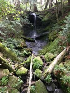 whatcom-falls-park-bellingham-washington3
