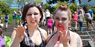 zombies vs survivors