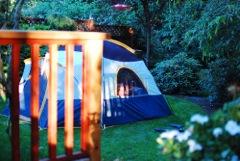 back-yard-camping