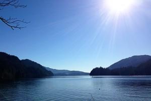 north-lake-whatcom-hertz-trail1
