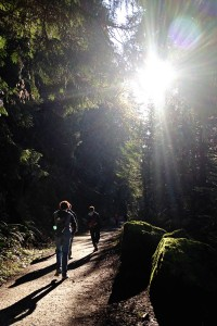 hiking whatcom county
