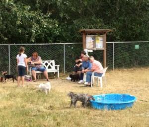 dog park bellingham