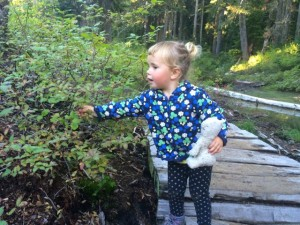 hiking kids bellingham