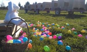 BelleWood Acres Easter