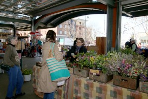 Visitors of the Bellingham Farmers Market can't help but stop by Beth's booth to smell the fragrant floral arrangements.