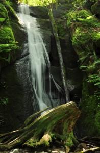 Chuckanut Falls
