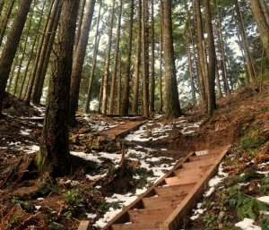 More than 100 steps were used to construct the Rock Trail.