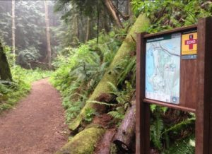 Trail system information kiosks, restrooms and parking lots will improve existing trailheads. Photo courtesy: Whatcom County Parks and Recreation.