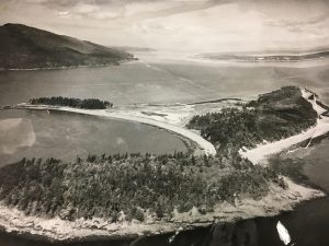 Eliza Island looked like this before development and the Pacific American Fisheries Company. Photo courtesy: Gordon Tweit.