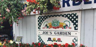 Fresh Summer Produce at Joe's Gardens