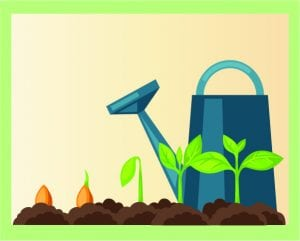 Veggie Gardening 101: Seeds vs. Starts @ WCLS South Whatcom Library   Bellingham   Washington   United States