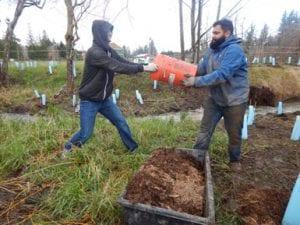 NSEA Community Work Party at Squalicum Creek @ Nooksack Salmon Enhancement Association   Bellingham   Washington   United States