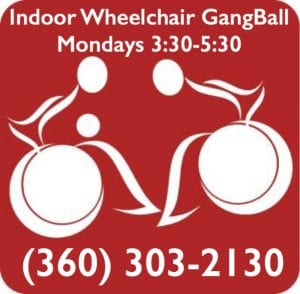 Indoor Wheelchair GangBall @ Indoor Wheelchair GangBall