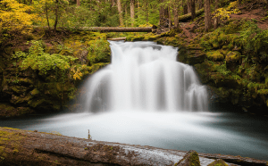 Go With the Flow: Waterfall and Stream Photography