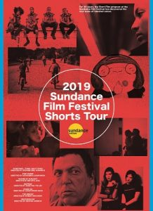 The 2019 Sundance Film Festival Short Film Tour @ Limelight Cinema