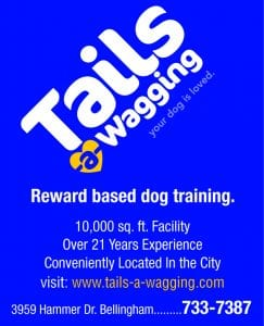 Tails-A-Wagging: open for doggie day care