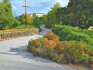 Self-Guided Stormwater Discovery Tour @ 5 areas of Bellingham: Squalicum Creek Park, Bloedel Donovan Park, the Railroad Trail, Fairhaven, and Downtown Bellingham